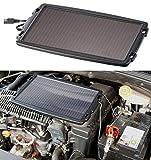 REVOLT Solar Batterieladegerät: Solar-Ladegerät für Auto-Batterien, 12 Volt, 2,4 Watt (Auto Solar Panel)